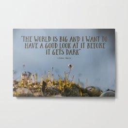 Big World Miniature World Metal Print