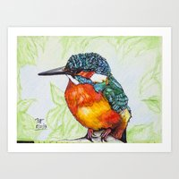 Kingfisher Art Print