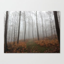 Nebel 2 Canvas Print