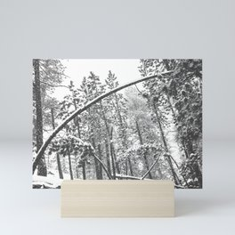 Forest Snowfall // Winter Tree Black and White Landscape Photography Backwoods Woodlands Woods Mini Art Print