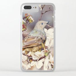 Bowerbirds and Magnolias Clear iPhone Case