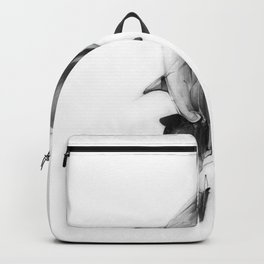 Shark II Backpack