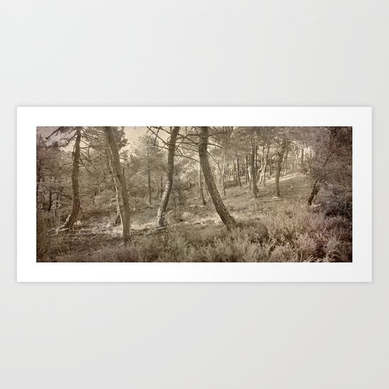 Dance of the forest..... Art Print