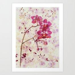 beauTEAful blooms: Orchids Art Print