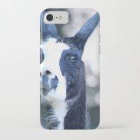llama iPhone & iPod Cases featuring Llama by Veronica Ventress
