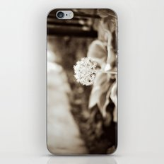 Little Friend iPhone & iPod Skin