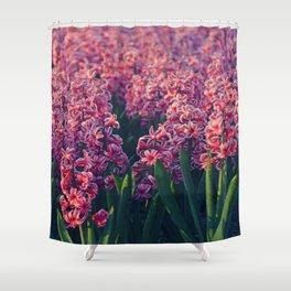 Hyacinth field #2 Shower Curtain
