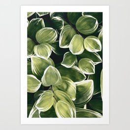 plant 201 Art Print