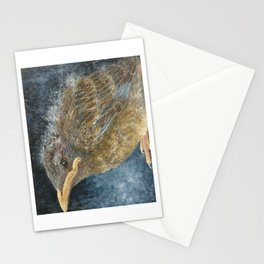 Robin Fledgling Stationery Cards