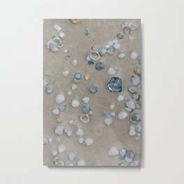 Photo of blue-ish sea shells, on the Dutch Wadden Island Texel, in the world heritage of the Waddensea | Fine Art Travel Photography | Metal Print