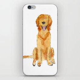 Golden Retriver iPhone Skin
