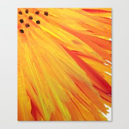Sunfower Canvas Print