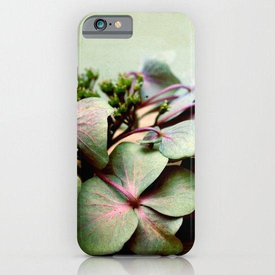 nostalgic blossoms iPhone & iPod Case