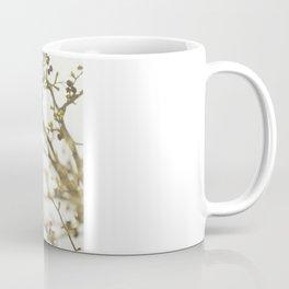 {OUTSTRETCH} Coffee Mug