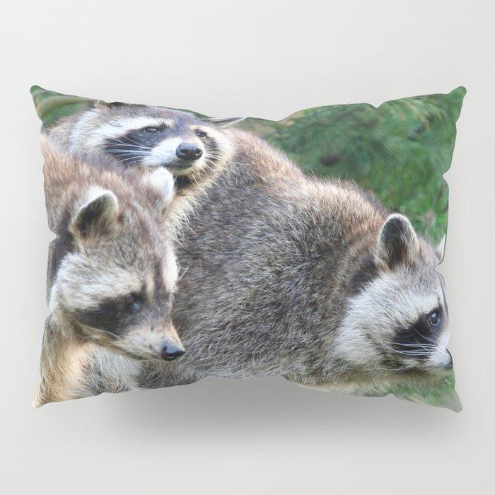 Raccoon_001_by_JAMFoto Pillow Sham