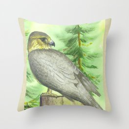 Merlin Falcon Throw Pillow
