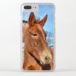 Clancy the Irish Mule Clear iPhone Case