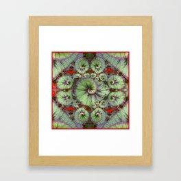 Escargot Begonias Abstract Framed Art Print