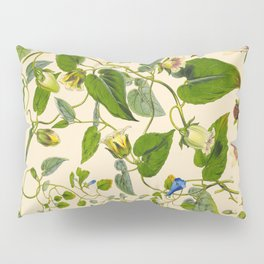 Blue And Yellow Himalayan Flowers Green Leaves Vintage Scientific Botanical Illustration Pillow Sham