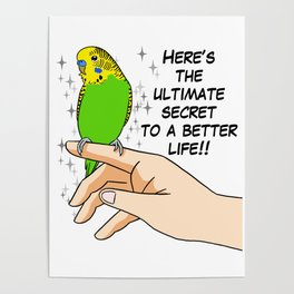 Budgies make life better Poster