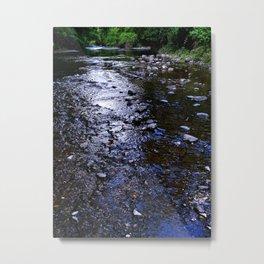In The Stream Metal Print