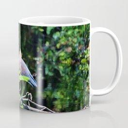 Juvenile Tricolored Heron Coffee Mug