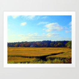 Autumn Marsh Art Print