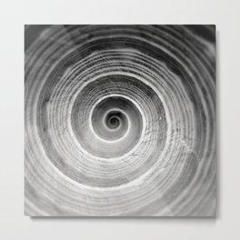 coquillage 6 Metal Print