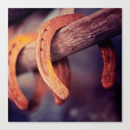 Horseshoes on Barn Wood Cowboy Country Western Canvas Print