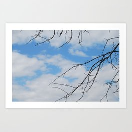 play crack the sky  Art Print