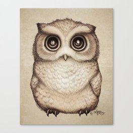 """""""The Little Owl"""" by Amber Marine ~ Graphite & Ink Illustration, (Copyright 2016) Canvas Print"""