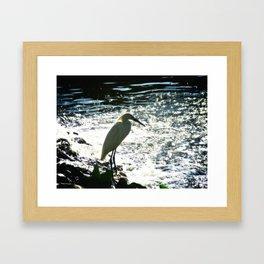 The Egret Framed Art Print