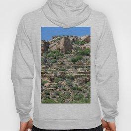 Mesa Verde, Co Hoody
