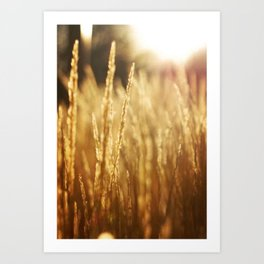 Morning Fields Vertical Art Print
