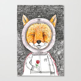 Le Petit Fox  Canvas Print