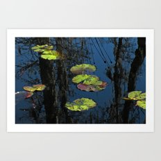 Winter Lily Pads Art Print