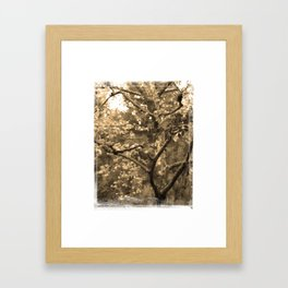 Tree of Hearts - Sepia Framed Art Print
