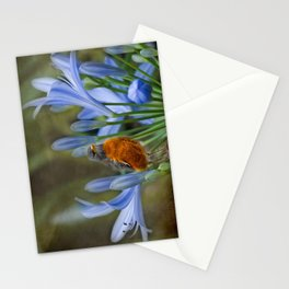 Robin in flowers Stationery Cards