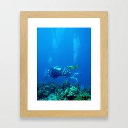 Scuba in Jamaica Framed Art Print