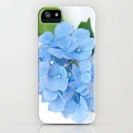 Blue Hydrangeas #1 #decor #art #society6 iPhone Case
