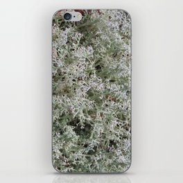 White Moss iPhone Skin