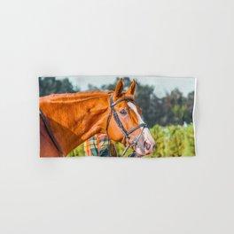 Horse head photo closeup Hand & Bath Towel