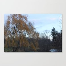 Wind in the Willow Canvas Print