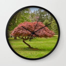 Woodend Sanctuary Wall Clock