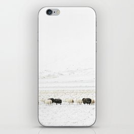 Icelandic Sheep VI iPhone Skin