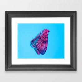 Bugged #12 Framed Art Print