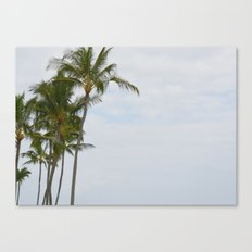 Palm Trees in Hawaii Canvas Print