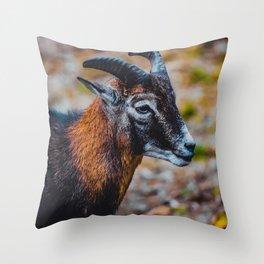 Mouflon Sheep Nature Photography Throw Pillow
