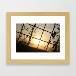 'Through The fence' by TDL Framed Art Print