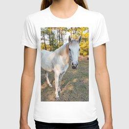 """""""Apache"""" The Worrier T-shirt"""